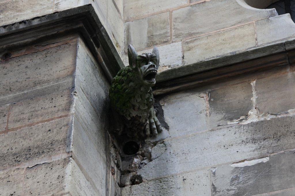 Gargoyles: not just for Notre-Dame